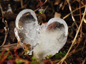 Le cœur un peu plus dur pour ne pas que les maux résonne dans Les battements de mon coeur 11429679-300x225
