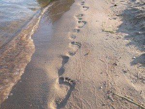 Citation dans Citations 48193-plages-pieds-pas-mer-sable-300x225